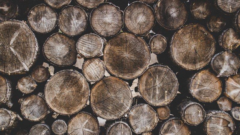 Biomassa energie