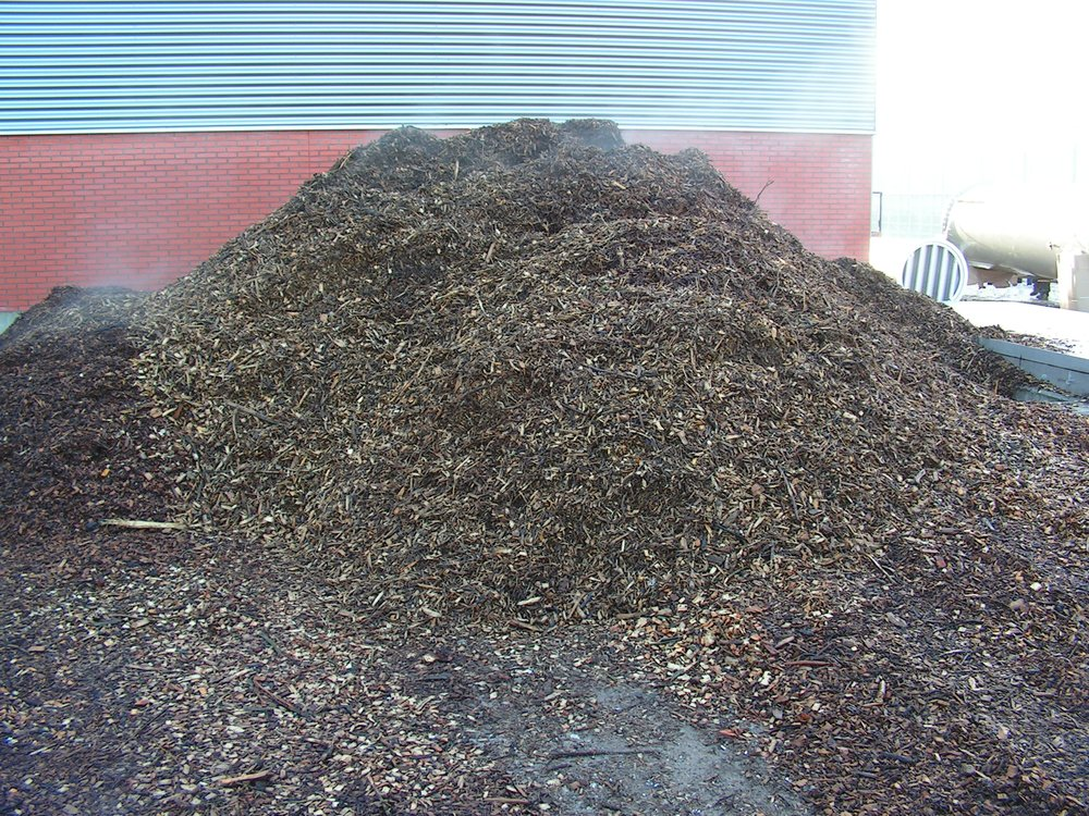 biomassa energie input