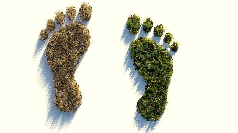Co2 footprint voorbeeld